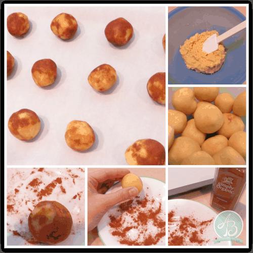 collage - snickerdoodle dough logo